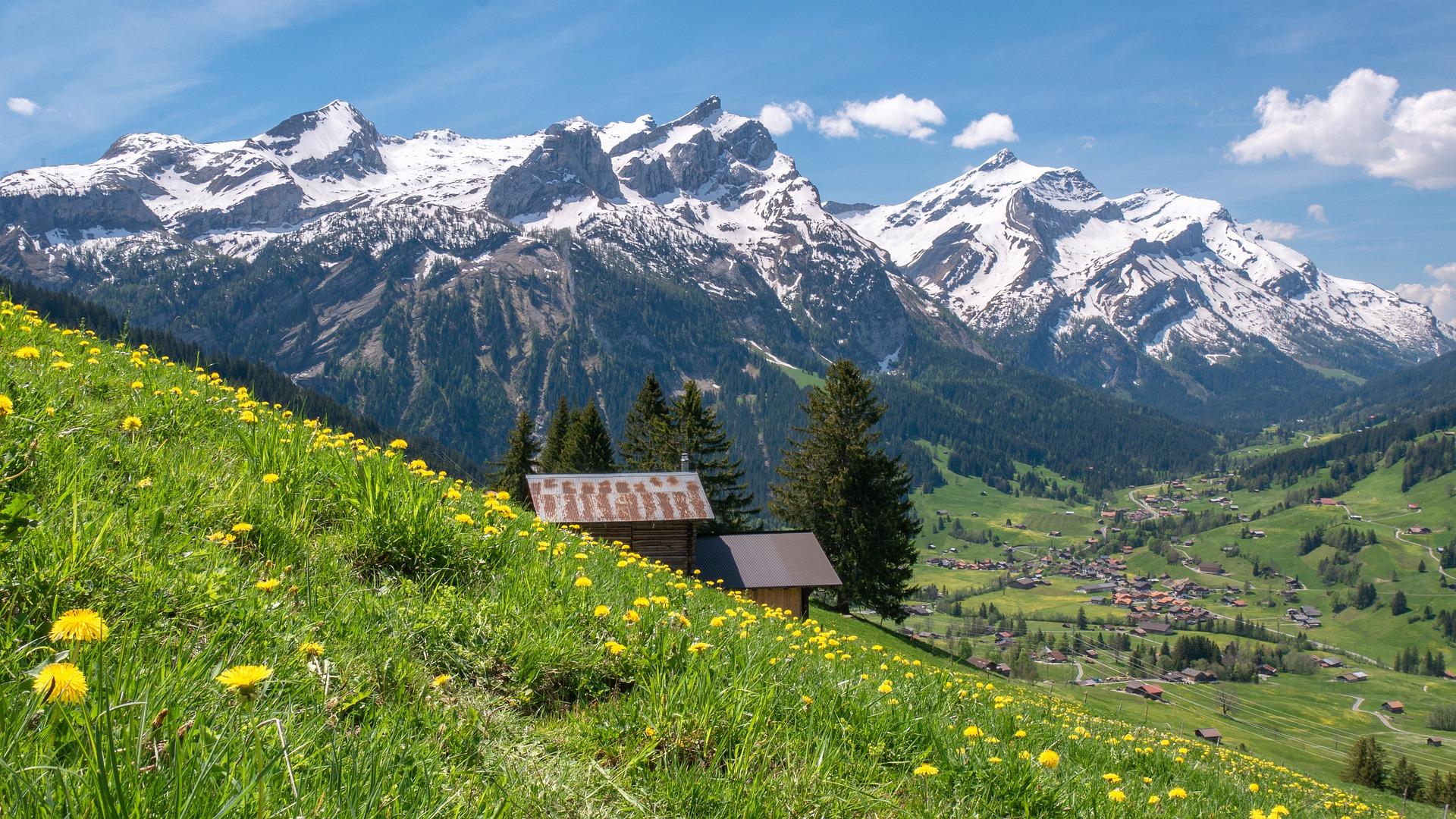 Circuit Elvetia si Mont Blanc